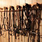Lodgepole Pine Bridle Rack